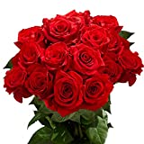 GlobalRose Fresh 50 Red Roses- Long Stem Flowers- Next Day Delivery
