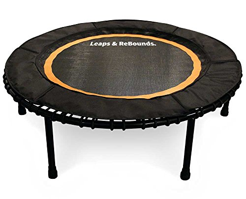 Leaps & Rebounds Bungee Rebounder - Carbon Steel Frame, 32 Latex Rubber Bungees, Quadruple Stitched Jump Mat, 1 Piece Bungee Cover. 6 Colors, 2 Sizes, 1 Year Warranty