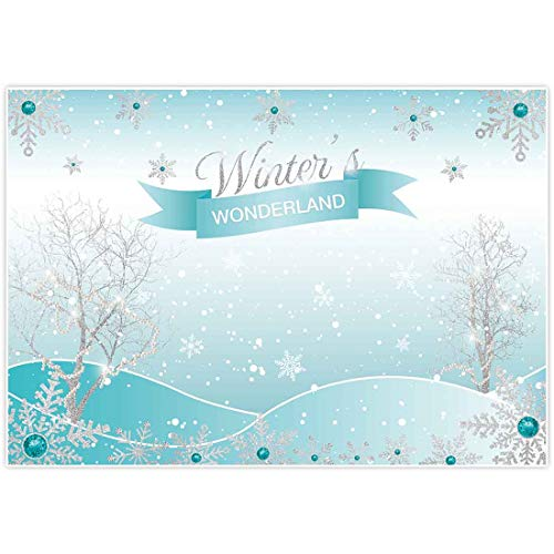 Winter Wonderland Theme For Sweet 16 (Allenjoy 7x5ft Winter Wonderland Theme Backdrop for Girl Sweet 6 1st Birthday Party Banner Supplies Festival Ice Blue Baby Shower Background Decorations Children Family Photo Shoot)
