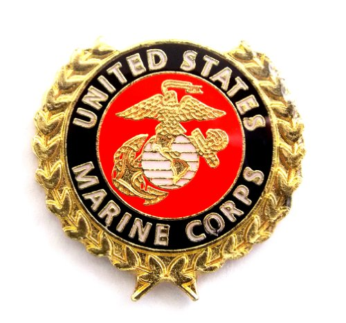 (USMC EGA United States Marine Corps With Gold Leaves Lapel Hat Pin Military PPM6010)