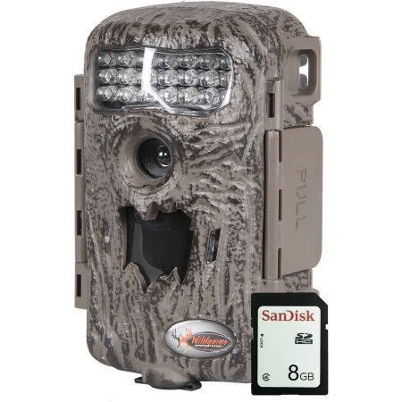 Digital Scout Infrared 10 MP Game Trail Camera IR Deer Turkey Hunting Motion (Motion Turkey)