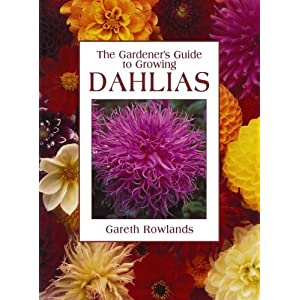 Gardener's Guide to Growing Dahlias