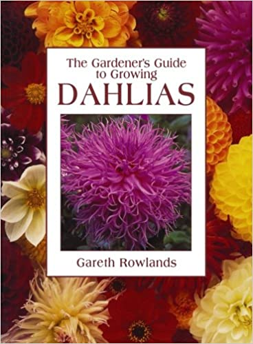 Gardener S Guide To Growing Dahlias Gareth Rowlands