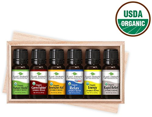 Plant Therapy Organic Synergy Set 10 mL (1/3 oz), Set of 6 Oils (Amber Lotion Unscented Massage)