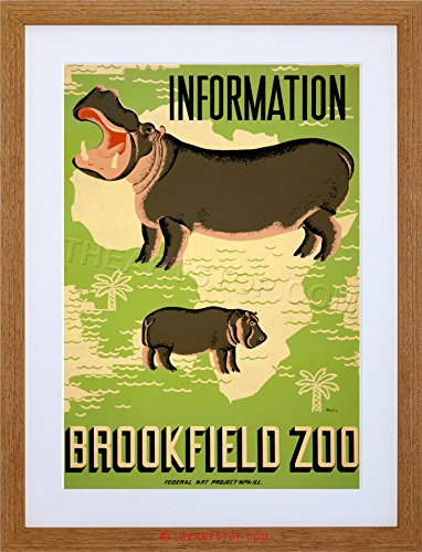AD Demonstration BROOKFIELD ZOO HIPPO AFRICA FRAMED PRINT F12X2598