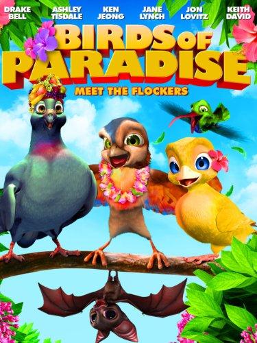 - Birds of Paradise