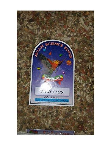(Volkman Avian Science Super Eclectus Bird Food 8)