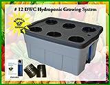 DWC Hydroponic Grow system #12 6-site H2OtoGro