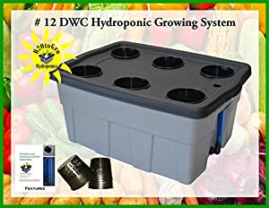 DWC Hydroponic Plant Growing System #12 6-site H2OtoGro
