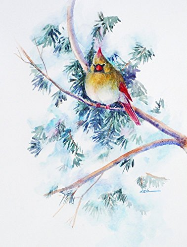 Northern Cardinal Watercolor Painting Winter Snow Scene Unframed 11x14 Janet (Snow Scenes Pictures)