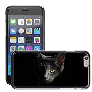 """Super Stellar Slim PC Hard Case Cover Skin Armor Shell Protection // M00125940 Cat Animals Cats Portrait Of Cat // Apple iPhone 6 4.7"""""""