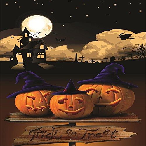 Leowefowa 5X5FT Vinyl Backdrop Thin Photography Background Pumpkin Castle Wizard Bat Trick or Treat Halloween Night Scenery for Naughty Guy Kids Portraits Backdrop 1.5(W)X1.5(H)M Photo Studio Props -