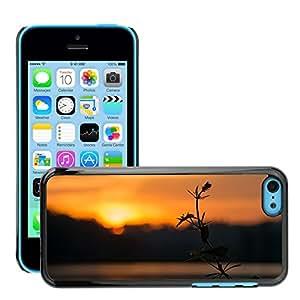 Print Motif Coque de protection Case Cover // M00155888 La salida del sol nubes anaranjadas del // Apple iPhone 5C