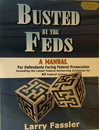 Read Online Busted by the Feds: A Manual for Defendants Facing Federal Prosecution ebook