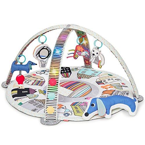 (Skip Hop Vibrant Village Smart Lights Activity Gym, Multi)