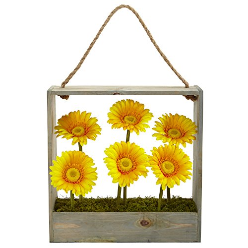 Nearly Natural Gerber Daisy Silk Garden in Wall Hanging Frame, Yellow (Gerber Daisy Decor)