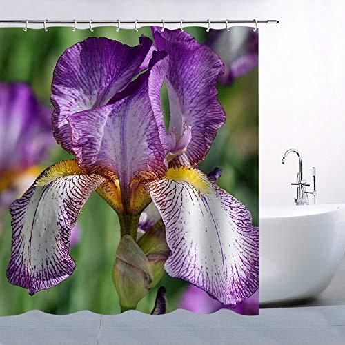 (Purple Iris Flower Home Decor Shower Curtain Green Plants Bathroom Curtains Machine Washable Waterproof with Hooks)