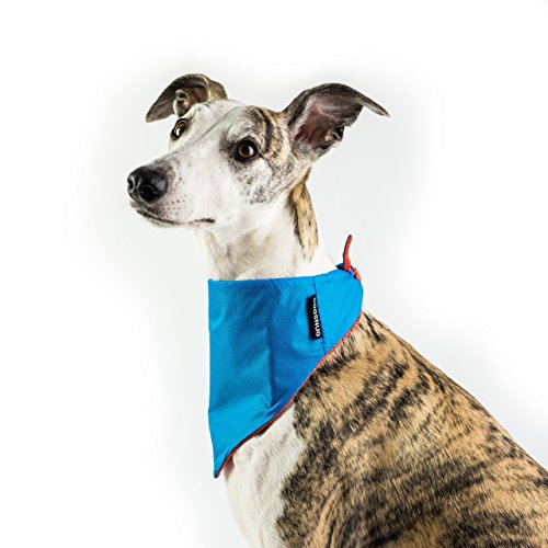 Dogsnug Dog Bandana Cooling Pet Scarf Neckerchief Bib Collar - Medium...
