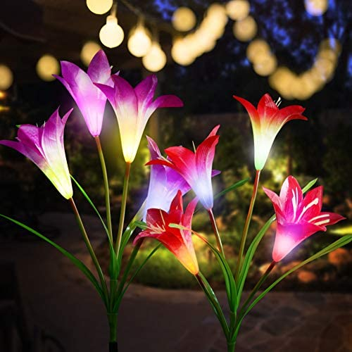 CCJK Solar Flower Lights,Solar Garden Stake Lights Outdoor with 8 Lily Flowers,Multi-Color Changing LED Solar Decorative Lights Garden,Patio,Backyard 2 Pack, Purple Red