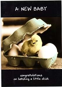 Nuevo bebé tarjeta Animal Antics–Felicidades por nacimiento un poco de pollito