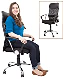Stand Steady ProErgo Mesh Ergonomic Office Chair | Supportive Desk Chair with Mesh High Back + Padded Headrest | Ergonomic Chair with Tilt and Height Adjustment | Sleek Modern Chair for Home/Office