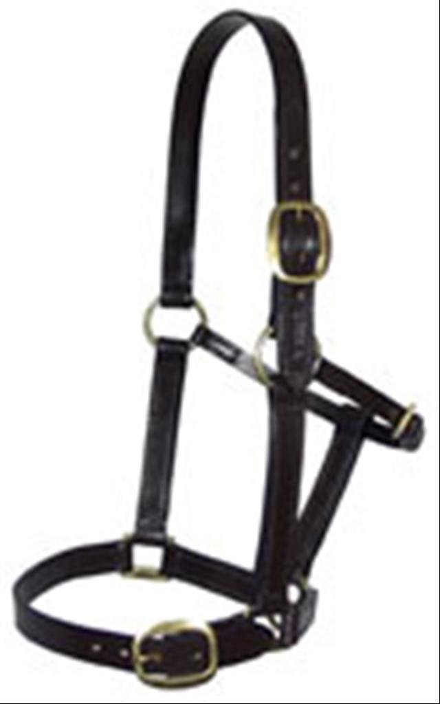 Black Knight Rider Leather Yearling Headcollar Solid Brass Fittings Fully Adjustable