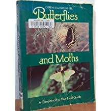 Butterflies and Moths: A Companion to Your Field Guide