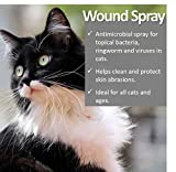 Vet Worthy Wound Spray for Cats