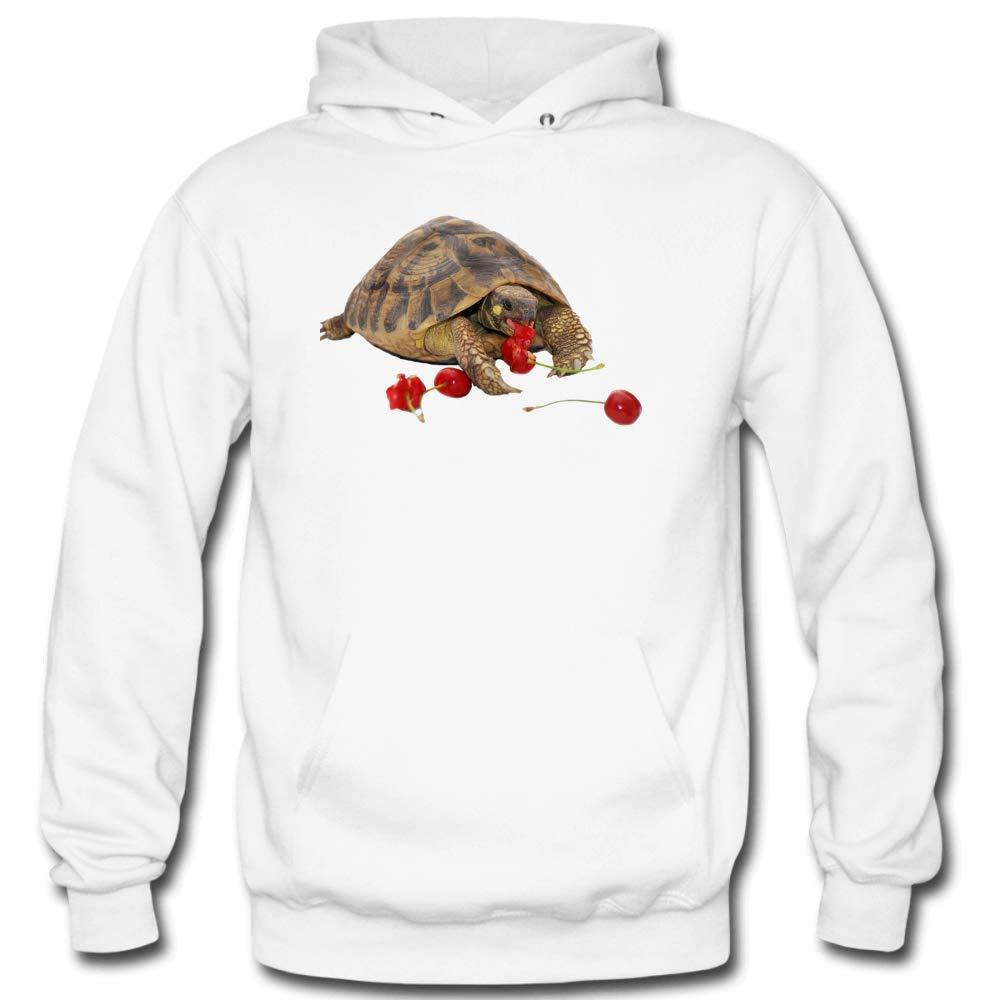Mens Sea Turtles Eat Strawberries Long Sleeve Gray Cotton Hooded Sweatshirt Personality Trend