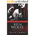 Red & Wolfe Part 4: An Erotic Fairy Tale