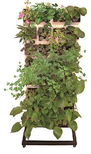 Indoor & Outdoor Planter System - Set Up a Movable Living Wall of Flowers or Herbs in your Home or Office - 32 Planters by Living Rack