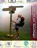 Siete Consejos para Aprovechar Al Maximo el Camino de Santiago, Cheri Powell, 098400257X
