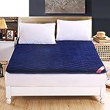 DHWJ Padded mattress,French velvet tatami mattress,Single double student dormitory bed mattress mat-C 90x200cm(35x79inch)