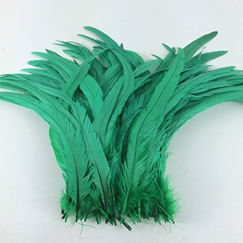 Tail Feather Costume (Sowder Grass Green Rooster Coque Tail Feathers 12-15inch Lengh Pack of 50)