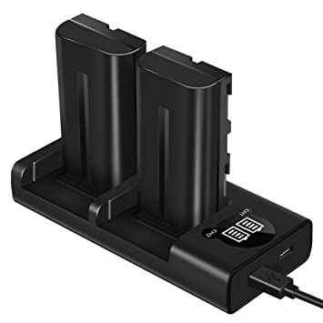ESDDI NP-F550 Batería para cámara de Video Sony con Juego de Cargador de Doble Ranura para Sony R1 / TR11, TR1100E, TR12, TR18, Sony CD-RV100, RV200, ...
