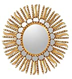 NOVICA Gold Sunburst Bronze Leaf Wood Framed Decorative Wall Mounted Mirror, Metallic 'Winter Sun' Review