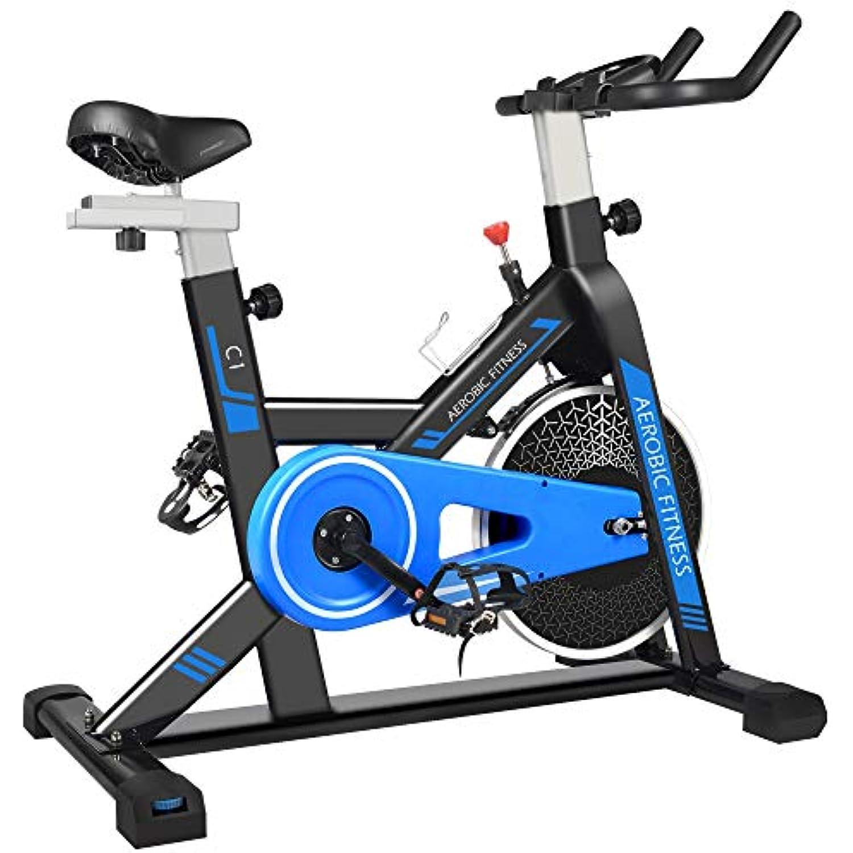 cycool Stationary Bike Exercise Bike Belt Drive Indoor Cycling Bike with Phone Stand,LCD Monitor,Comfortable Seat Cushion (cycoolC1-1)