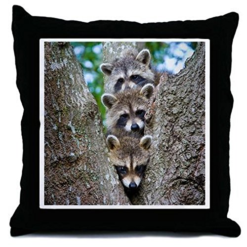 CafePress - Baby Raccoon Trio - Decor Throw Pillow (18