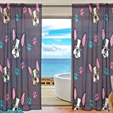 SEULIFE Window Sheer Curtain, Animal Dog French Bulldog Pattern Voile Curtain Drapes for Door Kitchen Living Room Bedroom 55x78 inches 2 Panels