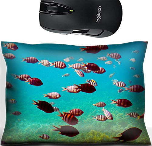 Liili Mouse Wrist Rest Office Decor Wrist Supporter Pillow Photo of tropical fishes at coral reef area IMAGE ID 12288977 112 Coral