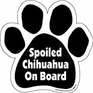 Imagine This Paw Car Magnet, Spoiled Chihuahua on Board, 5-1/2-Inch by 5-1/2-Inch