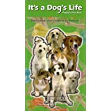 Circle of Friends: It's a Dog's Life