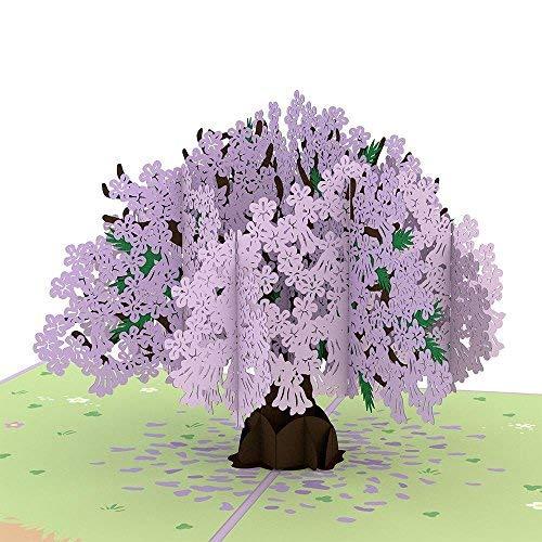 Beautiful Pop - Lovepop Jacaranda Pop Up Card, Lovepop Card Mothers Day, 3D Nature Card, Birthday Card, Mothers Day Card, Tree Card, 3D Greeting Cards