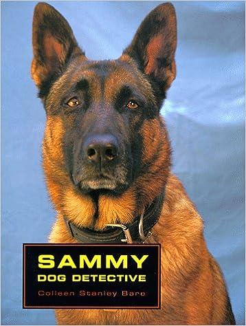 1000  images about Sammy's on Pinterest | Samoyed, Samoyed dogs ...