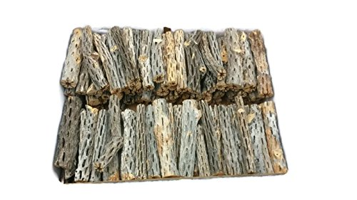 3'' or 6'' All Natural Cholla Wood Organic Untreated Aquarium Driftwood Decoration Chew Toy Shrimp Crab Pleco Cichlid Nano Tanks Birds Extra Large 1, 2, 3, 4, 5, 10, or 25 Pieces (100 Pieces, 6 inch) by Cholla Queen