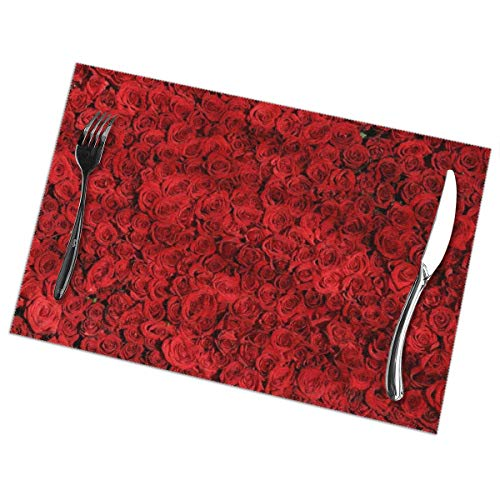 GGlooking Heat-Resistant Placemats Red Rose Wallpaper Dining Table Mats Washable Coasters Kitchen Pad Cup Plant Set of 6,12x18in