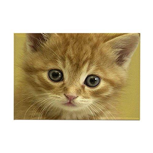(CafePress KITTY CAT Rectangle Magnet Rectangle Magnet, 2