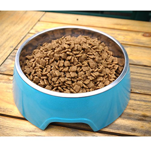Mainstreet Dog Bowls Stainless Steel Bamboo Fiber Water and Food Feeder with Stand Animal Pet Food Holder Eco-Friendly for Dogs Cats (Blue, Medium) by Mainstreet (Image #3)