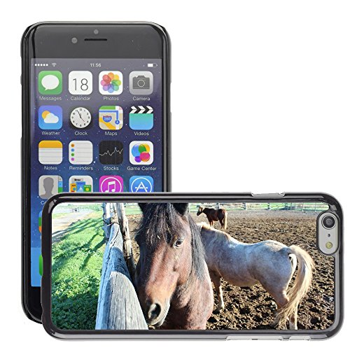 """Bild Hart Handy Schwarz Schutz Case Cover Schale Etui // M00134220 Pferdetier Equine Domestic // Apple iPhone 6 PLUS 5.5"""""""