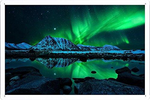 Northern Lights Landscape Gardening